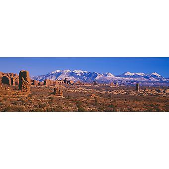 Windows Section Arches National Park Moab Utah Poster Print