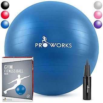 Anti-Burst Exercise Ball 55cm Heavy Duty With Pump - Blue