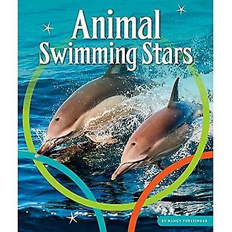 Animal Swimming Stars (Animal Olympics)