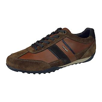 Geox U Wells C Mens Leather Trainers / Shoes - Brown