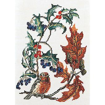 Redbreast On Aida Counted Cross Stitch Kit-9.75