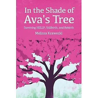 In the Shade of Ava's Tree: Surviving HELLP, Stillbirth, and Rebirth