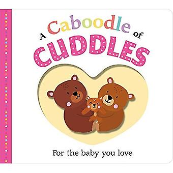 Picture Fit Board Books: A� Caboodle of Cuddles (Picture Fit) [Board book]