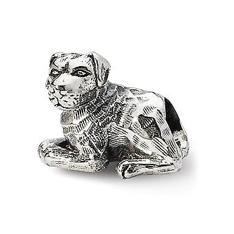 925 Sterling Silver Polished Antique finish Reflections Rottweiler Bead Charm