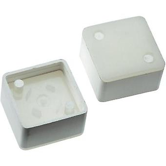 Switch cap White Mentor 2271.1207