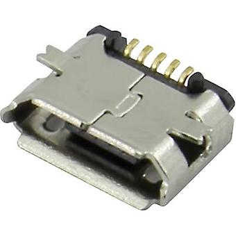 Socket, horizontal mount 207A-BBA0-R Attend Content: 1 pc(s)