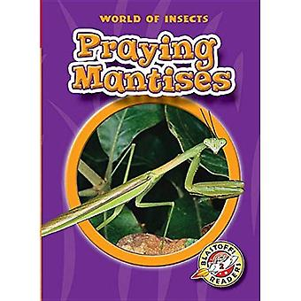 Praying Mantises: `` (World� of Insects)