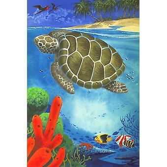 Svømning skildpadde plakat Print af John Francis