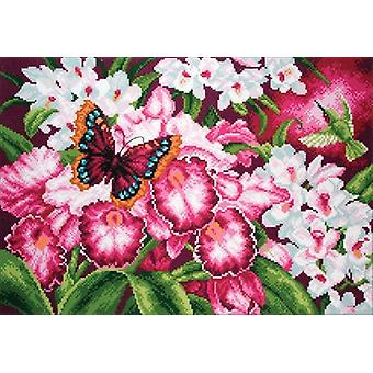 Collection D'Art Stamped Cross Stitch Kit 37X49cm-Orchids CDPA1138