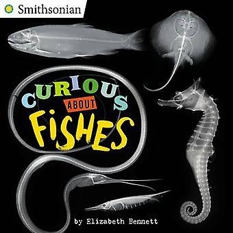 Nyfiken på fiskar av Elizabeth Bennett - 9780448484624 bok