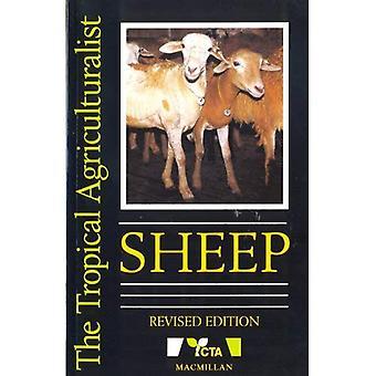 Pecore (l'agricoltore tropicale)
