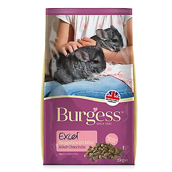 Burgess Excel Adult Chinchilla Nuggets With Mint 2kg
