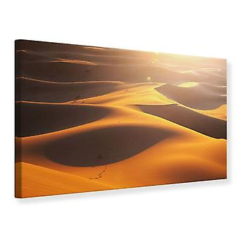 Canvas Print Wilderness Journey