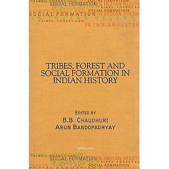 Tribes, Forest, and Social Formation in Indian History