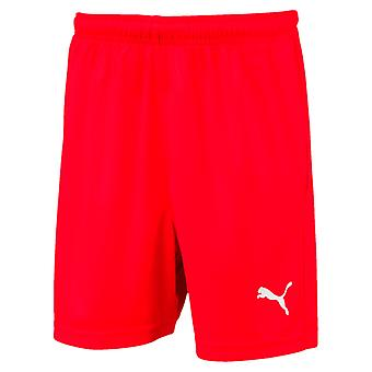 PUMA League s core Jr kids of soccer shorts Red