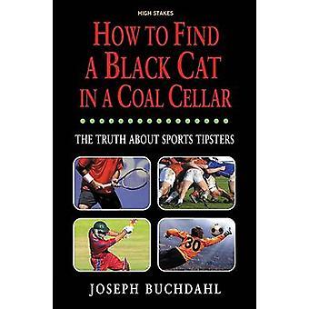 How to Find a Black Cat in a Coal Cellar by Joseph Buchdahl - 9781843