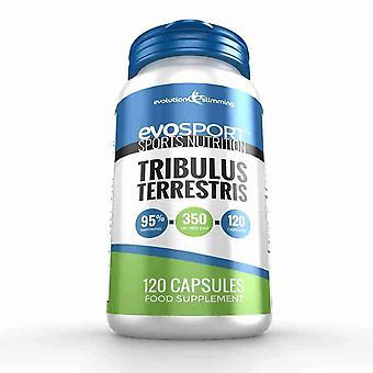 EvoSport Tribulus Terrestris con 95% de saponinas - 120 cápsulas - nutrición deportiva - evolución adelgazar