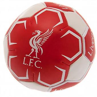 Liverpool 4 inch Soft Ball