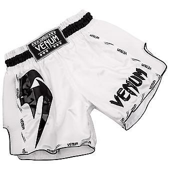 Venum Giant ligero Muay Thai Shorts - blanco/negro