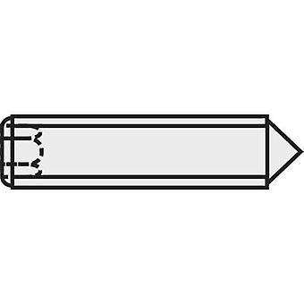 TOOLCRAFT 839851 Grub screw M6 10 mm Steel 20 pc(s)