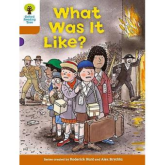 Oxford Reading Tree - Level 8 - More Stories - What Was it Like? by Rode