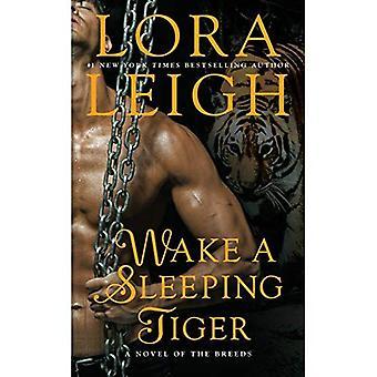 Tras un sueño Tigre: Una novela de las razas