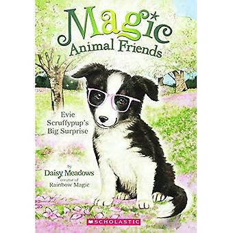 Evie Scruffypup's Surprise (Magic Animal Friends)