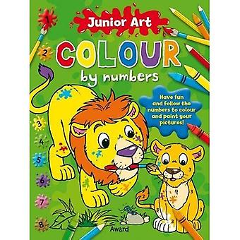 Pirate: Colour By Numbers (Junior Art)