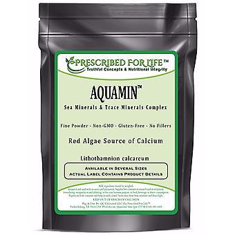 Trace Minerals - AquaMin (F) Natural Marine Calcium & Trace Mineral Complex ING: Organic Powder