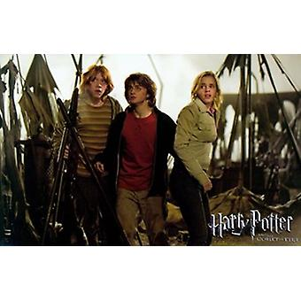 Harry Potter and the Goblet of Fire-Film-Poster (17 x 11)