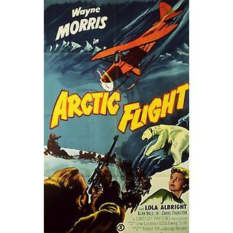 Arktiska flyg filmaffisch (11 x 17)