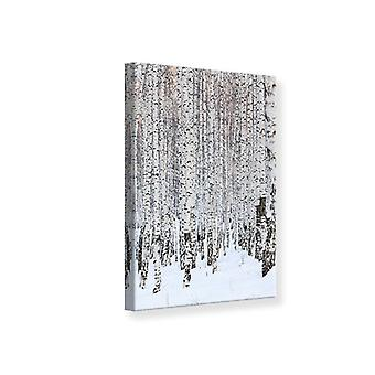 Canvas Print The Birch Forest In Winter