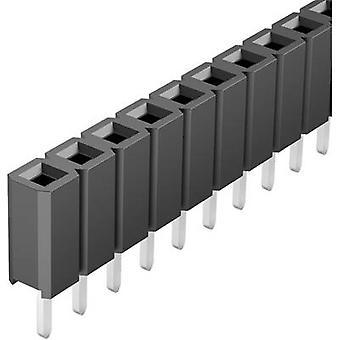 Fischer Elektronik Receptacles (standard) No. of rows: 1 Pins per row: 36 BL LP 1/ 36/S 1 pc(s)