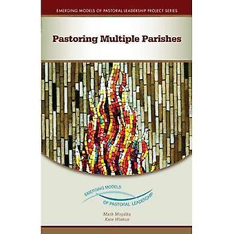 Pastoring Multiple Parishes (Emerging Models of Pastoral Leadership)