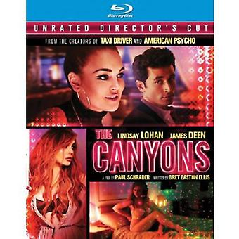 Canyons [Director's Cut] [Blu-ray] [BLU-RAY] USA import