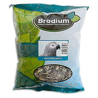 Bradium Bradium Pipes For Parrots 400Gr. Approx. (Birds , Bird Food)