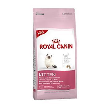 Royal Canin kat killing i alderen 4 til 12 måneder gammel mad 36 tørre Mix 10 kg