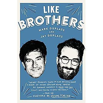 Som bröder