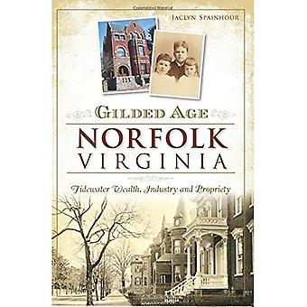 Gilded Age Norfolk, Virginia:: Tidewater Wealth, Industry and Propriety (None)