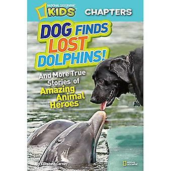 Dog Finds Lost Dolphins!: And More True Stories of Amazing Animal Heroes (National Geographic Kids Chapters)