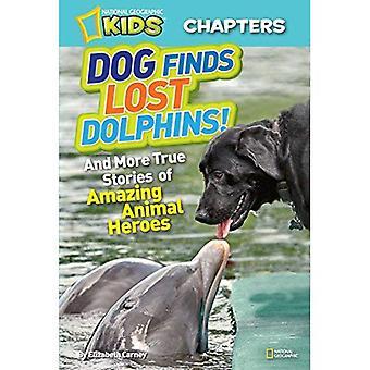 Hund findet Delfine verloren!: und mehr wahre Geschichten von erstaunlichen tierische Helden (National Geographic Kids Kapitel)