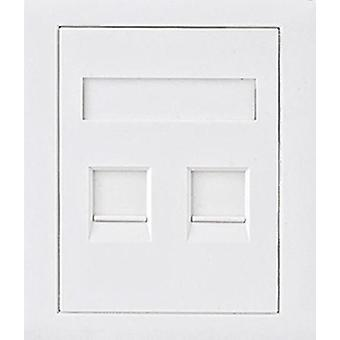CAT5e RJ45 Wall Face Plate 86x86mm 2 Port Socket Kit