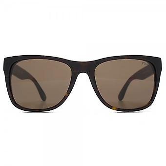 Polo Ralph Lauren Retro Style Sunglasses In Shiny Dark Havana