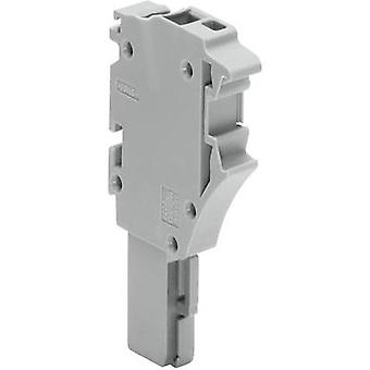 WAGO 2022-103 1 Conductor Female Multipoint Connector Series 2022 Grey