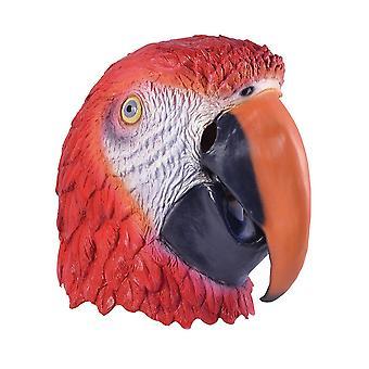 Bnov papegøje