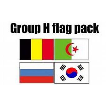 Gruppe H Football World Cup 2014 Flag Pack (5 ft x 3 ft)