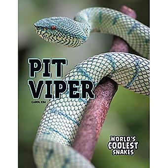 Pit Viper (World's Coolest Snakes)