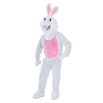 Rabbit Costume. Big Head