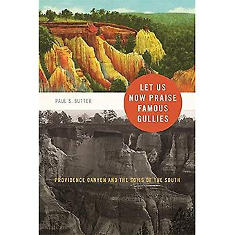 Let Us Now Praise Famous Gullies: Providence Canyon and the Soils of the South (Environmental History and the...