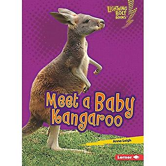 Meet a Baby Kangaroo (Lightning Bolt Books Baby Australian Animals)
